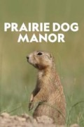 Prairie Dog Manor