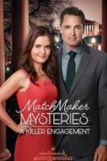 The Matchmaker Mysteries
