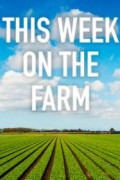 This Week on the Farm